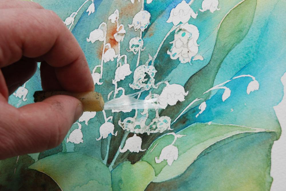 photographie qui montre le geste de gommage pour retirer la gomme liquide sur une aquarelle