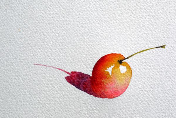 réalisation d'une ombre a l'aquarelle sur une cerise étape 8
