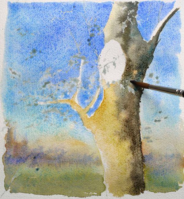optimisation aquarelle ombre arbre couleur arbre