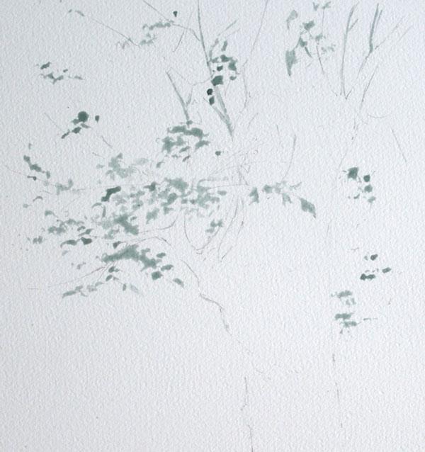 optimisation aquarelle ombre arbre drawing gum final