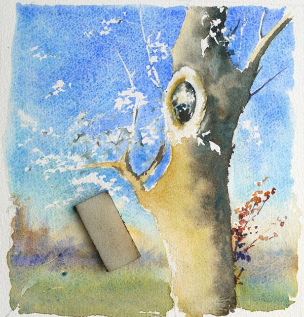 optimisation aquarelle ombre arbre feuillage