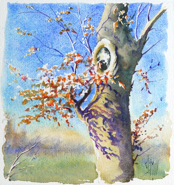 optimisation aquarelle ombre arbre final1