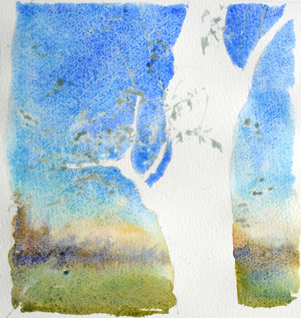 optimisation aquarelle ombre arbre fond
