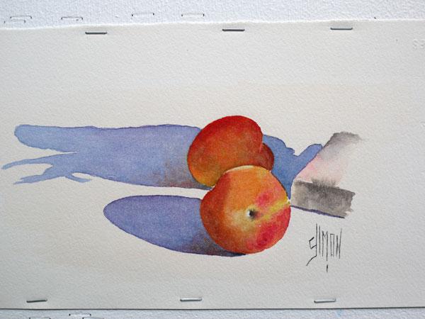 Aquarelle abricot finale