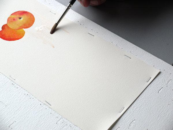 Aquarelle abricot lavis jaune naples