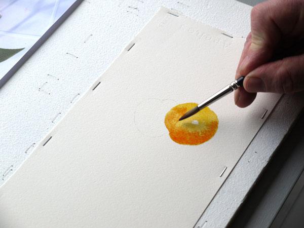 Aquarelle abricot orange etape2