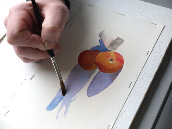 Aquarelle abricot realiser accentuation ombres etape2
