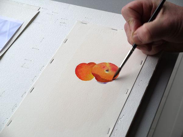 Aquarelle abricot realiser ombres etape2