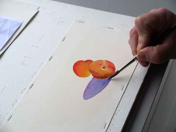 Aquarelle abricot realiser ombres etpae4
