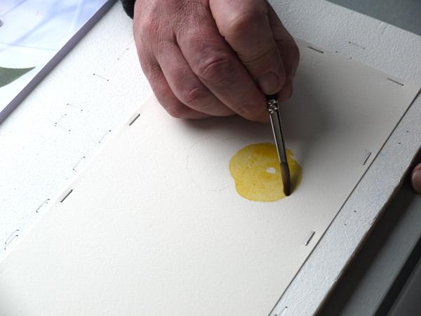 Aquarelle construction abricot jaune
