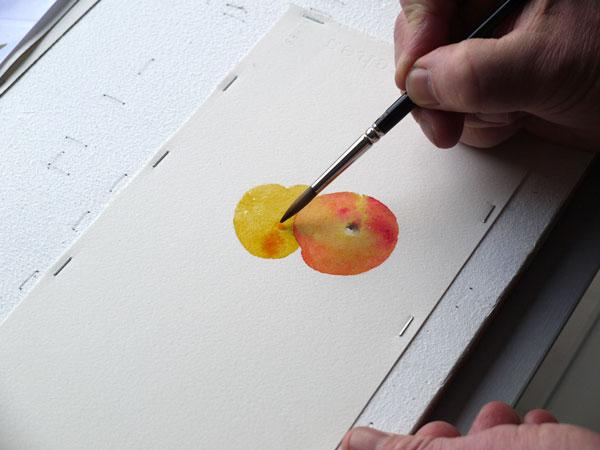 Aquarelle construction deuxieme abricot etape3