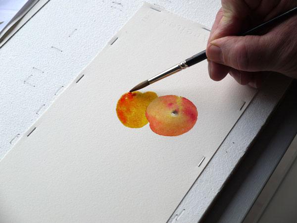 Aquarelle construction deuxieme abricot etape4