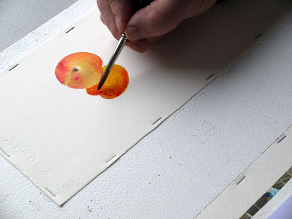 Aquarelle construction deuxieme abricot etape5