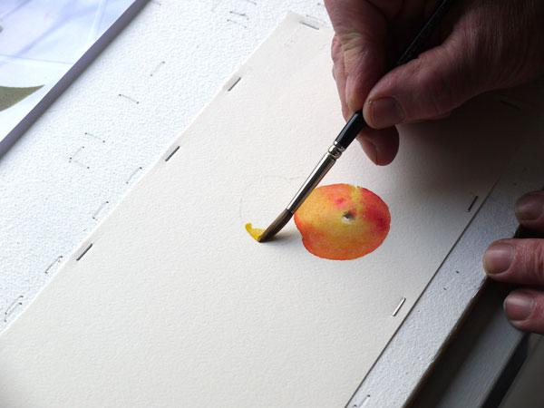 Aquarelle construction deuxieme abricot