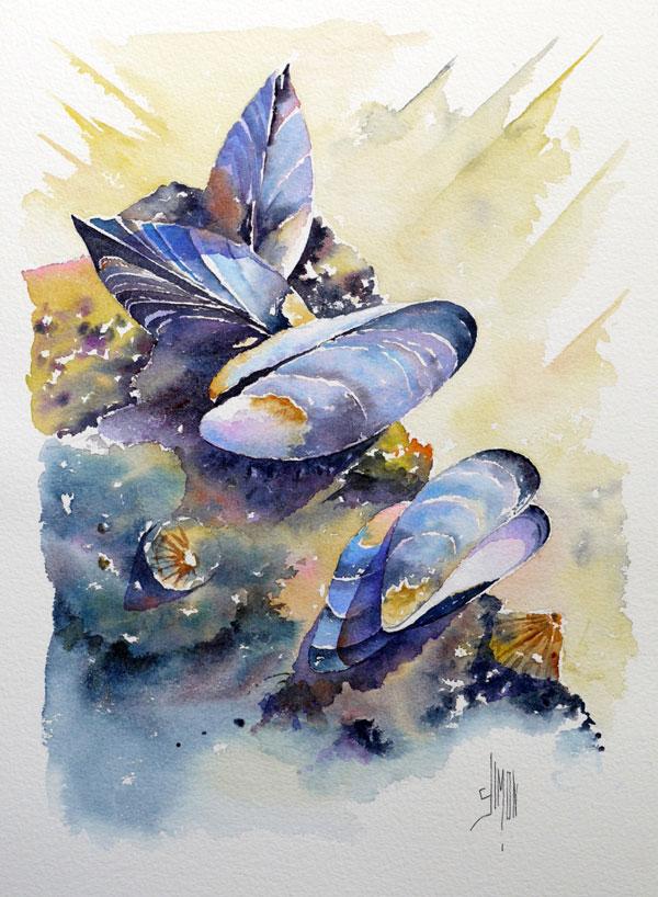 aquarelle - moules