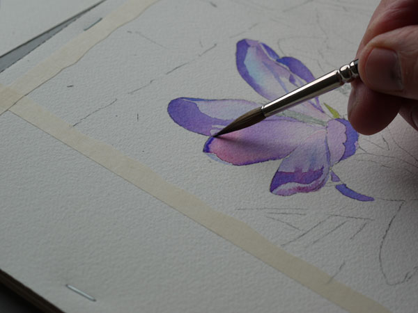 04 Aquarelle debut ombre 03