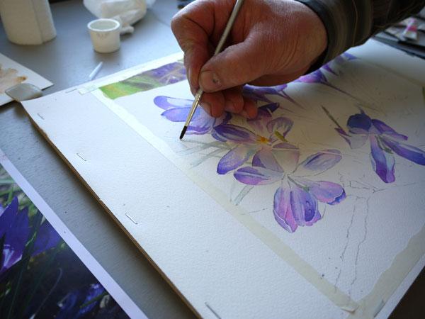 08 Aquarelle preservation drawing gum
