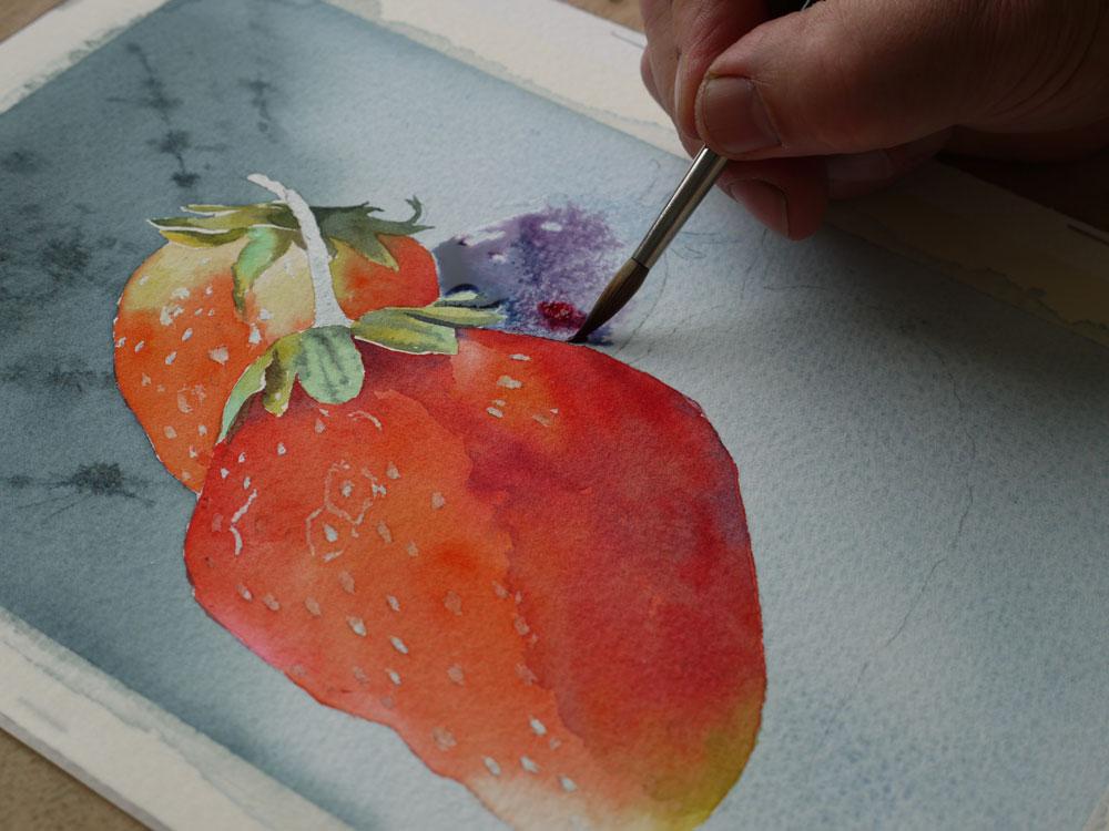 aquarelle-fraise-ombre-portee-20