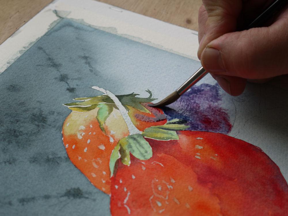 aquarelle-fraise-ombre-portee-21