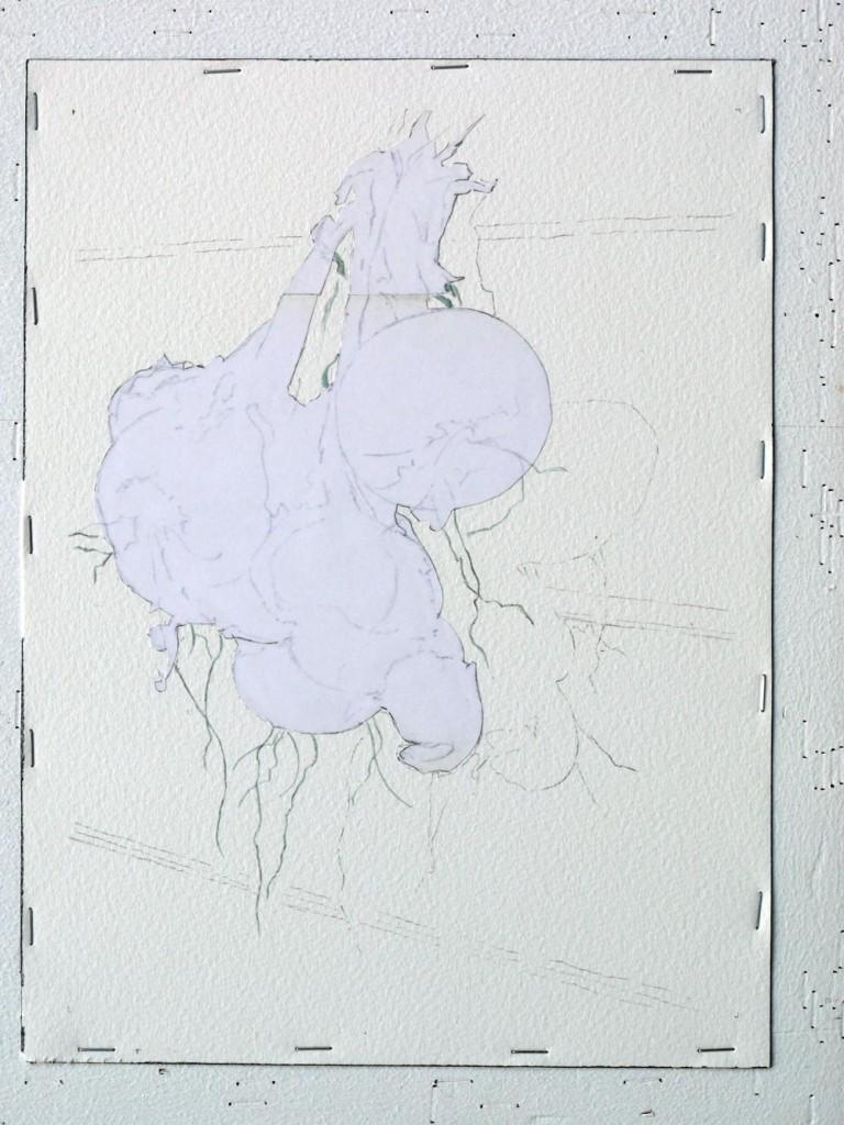 07-ajout-du-drawing-gum-sur-radicelle