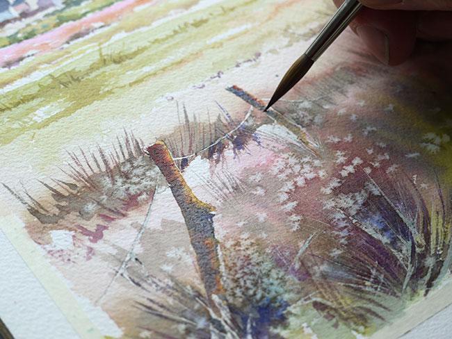 aquarelle_watercolor-champ-damgan47