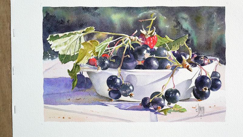 35-aquarelle-cassis-groseille