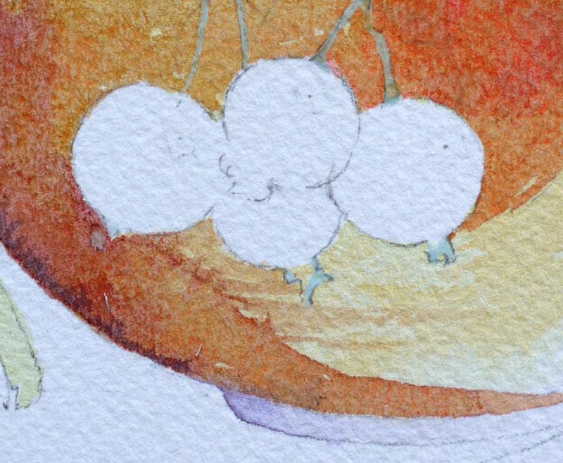 7A-aquarelle-cassis-groseille