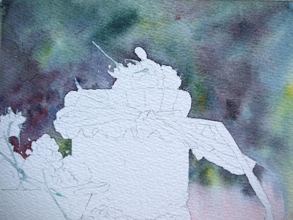 10-Aquarelle-joel-simon-feuillage-Framboises