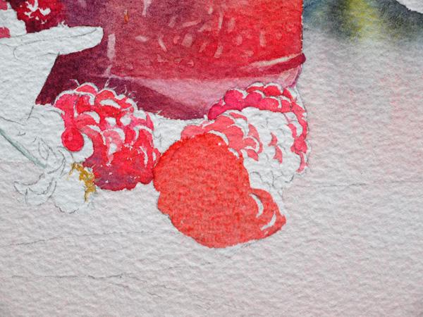 25-Aquarelle-joel-simon-Framboises