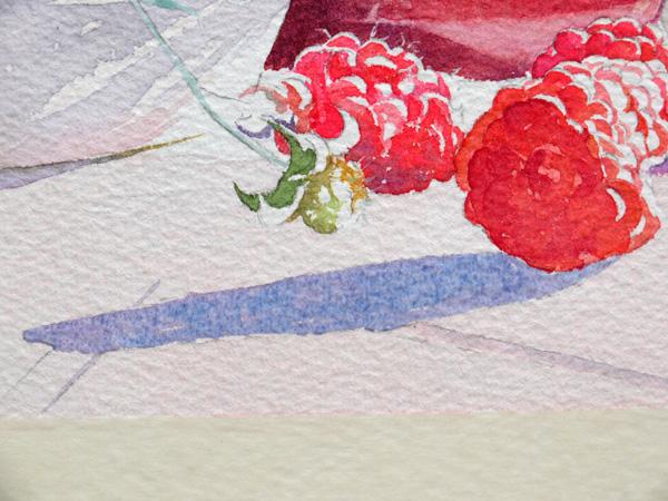 27-Aquarelle-joel-simon-ombres-Framboises