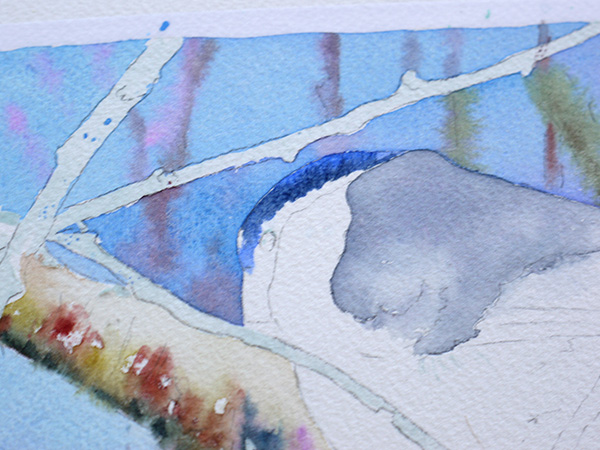 joel simon aquarelle bouvreuil 11