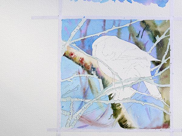 joel simon aquarelle bouvreuil 8