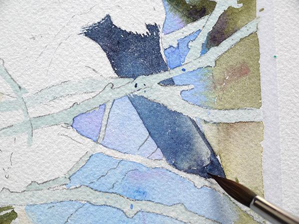 joel simon aquarelle bouvreuil 9