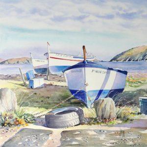 13 Barques a Port Lligat