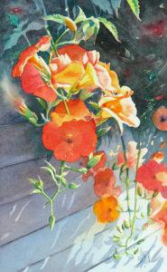 aquarelle de fleurs Bignone
