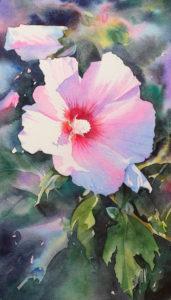 Aquarelle d'une fleur lavataire