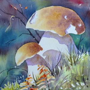 Aquarelle de deux champignons cèpes