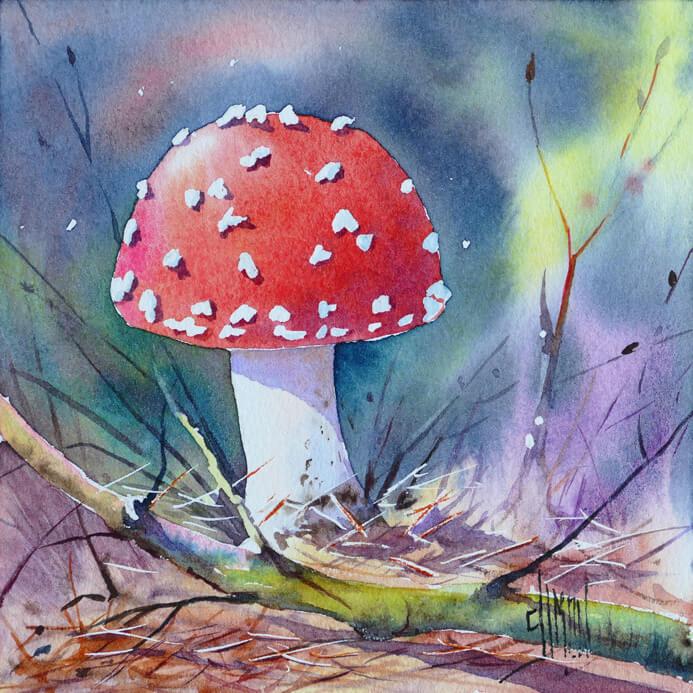 Aquarelle d'un champignon vénéneux