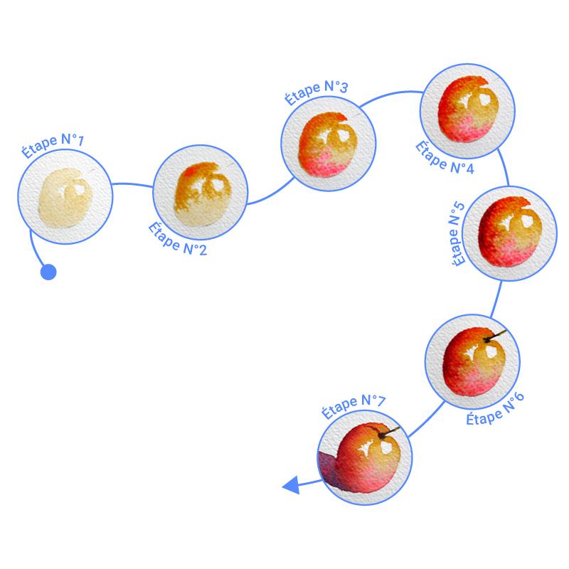 illustration des étapes clés du processus de création d'une aquarelle